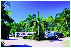 Tropical Hibiscus Caravan Park - Accommodation Cairns