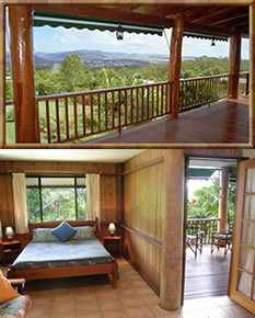 Atherton Blue Gum - Accommodation Cairns