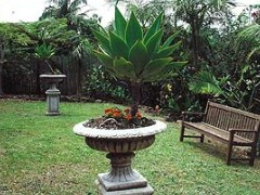 Bangalow Retreat - Accommodation Cairns