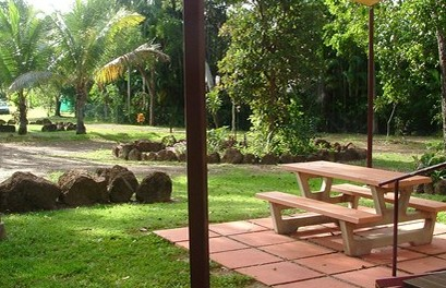 Virginia Heliconia Farm - Accommodation Cairns