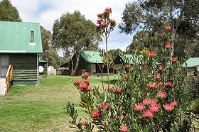 Derwent Bridge Chalets and Studios - Accommodation Cairns