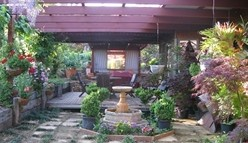 Blossoms Bed and Breakfast - Accommodation Cairns