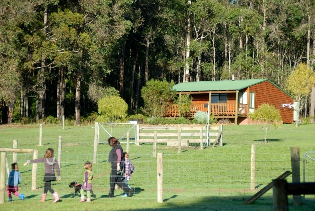 Diamond Forest Farm Stay - Accommodation Cairns