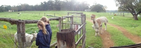 Boronia Farm Farmstay - Accommodation Cairns