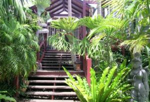 Maleny Tropical Retreat - Accommodation Cairns