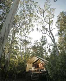 Paperbark Camp - Accommodation Cairns