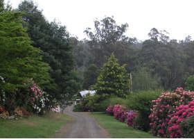 Mountain Rivers Lodge - Accommodation Cairns