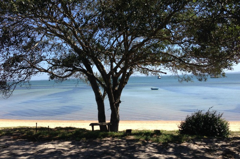 Adams Beach Camping Ground - Accommodation Cairns