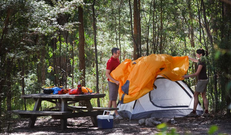 Bald Rock campground and picnic area - Accommodation Cairns
