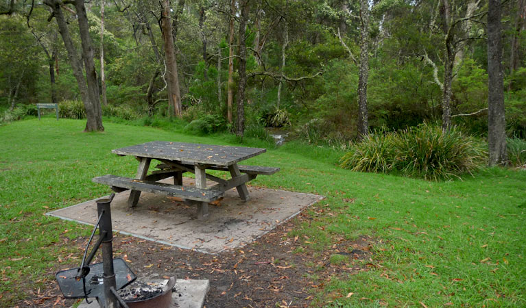 Chaelundi campground - Accommodation Cairns