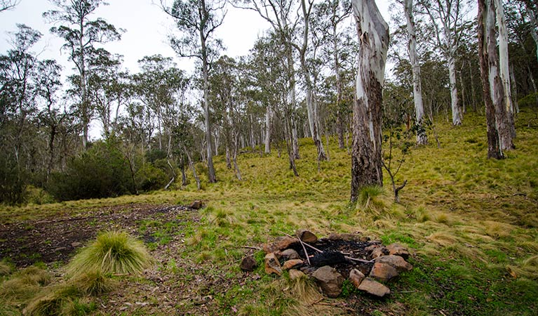 Gummi Falls campground - Accommodation Cairns