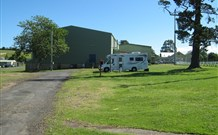 Milton Showground Camping - Accommodation Cairns