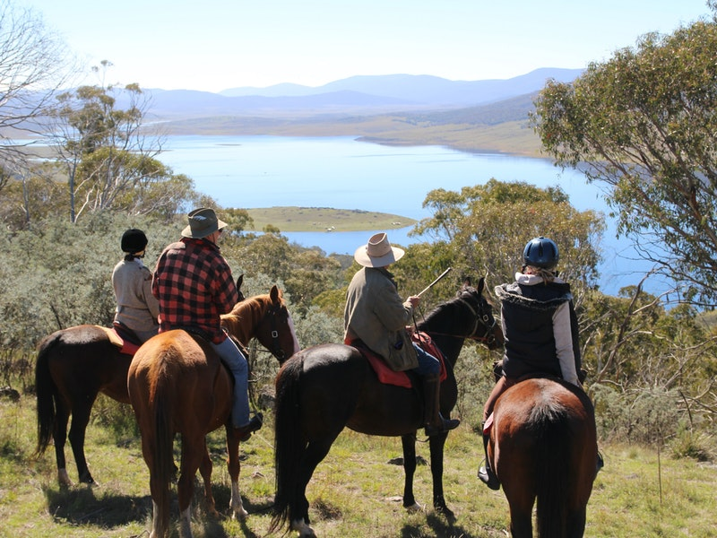 Reynella Homestead and Horseback Rides - Accommodation Cairns