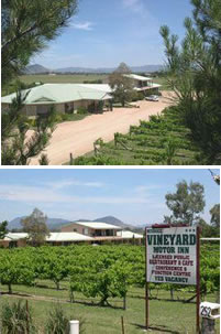 Mudgee Vineyard Motor Inn - Accommodation Cairns