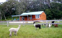 Moorallie Cottage Farm Stay - Accommodation Cairns