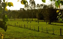 Stone Cottage Mittagong - Accommodation Cairns