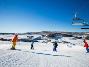 The Coachman Ski Lodge - Accommodation Cairns