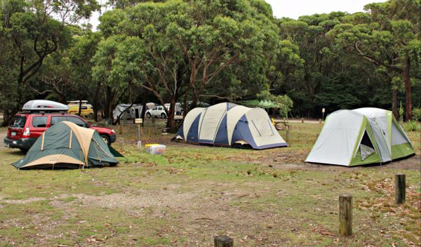 Pretty Beach Campground Murramarang National Park - Accommodation Cairns