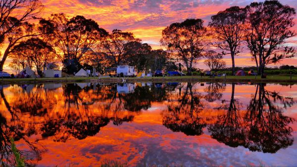 Coonawarra Bush Holiday Park - Accommodation Cairns