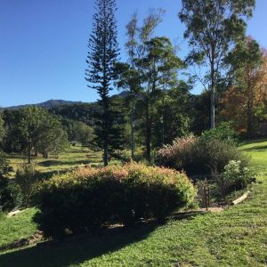 The Croft Bed and Breakfast - Accommodation Cairns