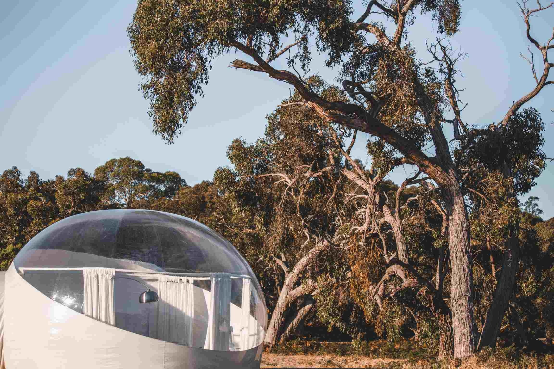 Coonawarra Bubble Tents - Accommodation Cairns