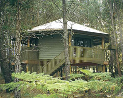 Possums Hideaway - Accommodation Cairns
