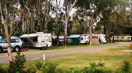 Buronga Riverside Tourist Park - Accommodation Cairns