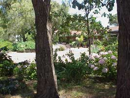 Peaceful Bay Bed and Breakfast - Accommodation Cairns