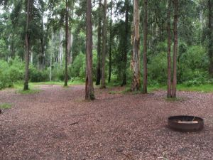 Murphys Glen campground - Accommodation Cairns