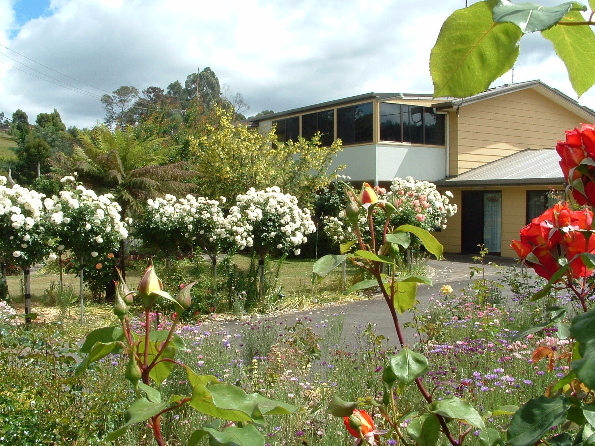 North East Restawhile Bed and Breakfast - Accommodation Cairns