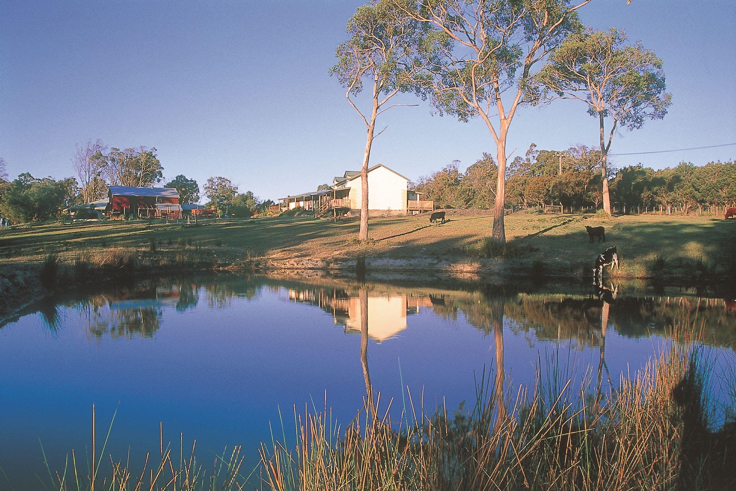 Platypus Park Country Retreat - Accommodation Cairns