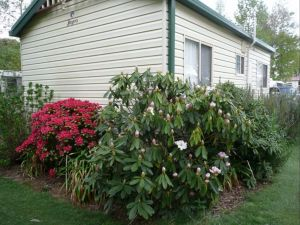 Jenolan Caravan Park - Accommodation Cairns