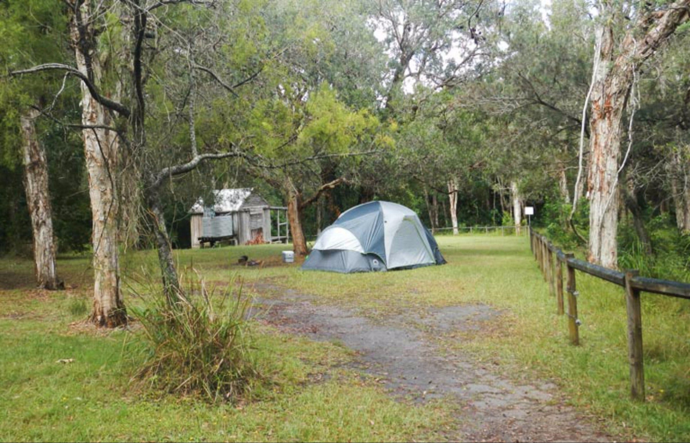 Kylies Hut walk-in campground - Accommodation Cairns