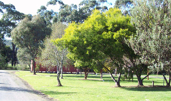 Otways Tourist Park