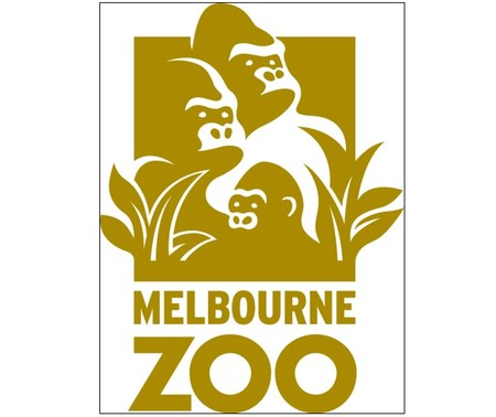 Melbourne Zoo - Accommodation Cairns