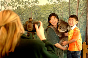 Cleland Wildlife Park - Accommodation Cairns