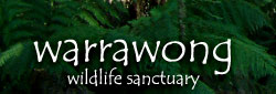 Warrawong Wildlife Park - Accommodation Cairns