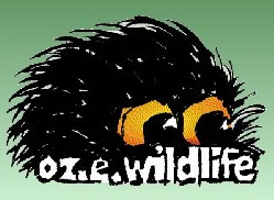 OZe Wildlife - Accommodation Cairns