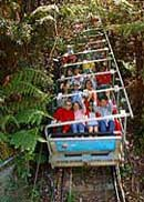 Scenic World Blue Mountains - Accommodation Cairns