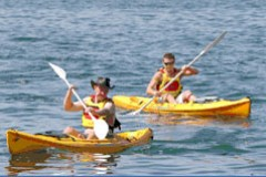 Manly Kayaks - Accommodation Cairns
