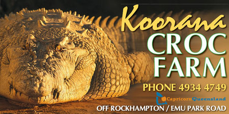 Koorana Saltwater Crocodile Farm - Accommodation Cairns