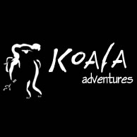Koala Adventures - Accommodation Cairns