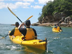 Sydney Harbour Kayaks - Accommodation Cairns
