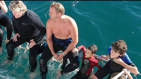 Dolphcom - Dolphin & Whale Swimming Adventures - Accommodation Cairns