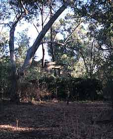 Ghost House Walk Trail Yanchep National Park - Accommodation Cairns