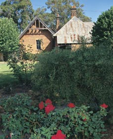 Heritage Rose Garden - Accommodation Cairns