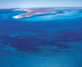 Dirk Hartog Island - Accommodation Cairns