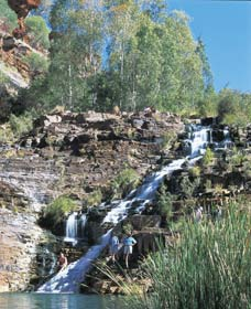 Fortescue Falls - Accommodation Cairns