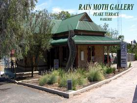 Rain Moth Gallery - Accommodation Cairns