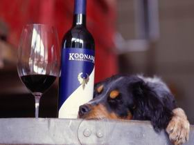 Koonara Wines - Accommodation Cairns